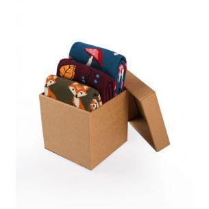 BOX 3 Colour Cotton
