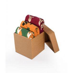 BOX 3 Colour Cotton FOREST